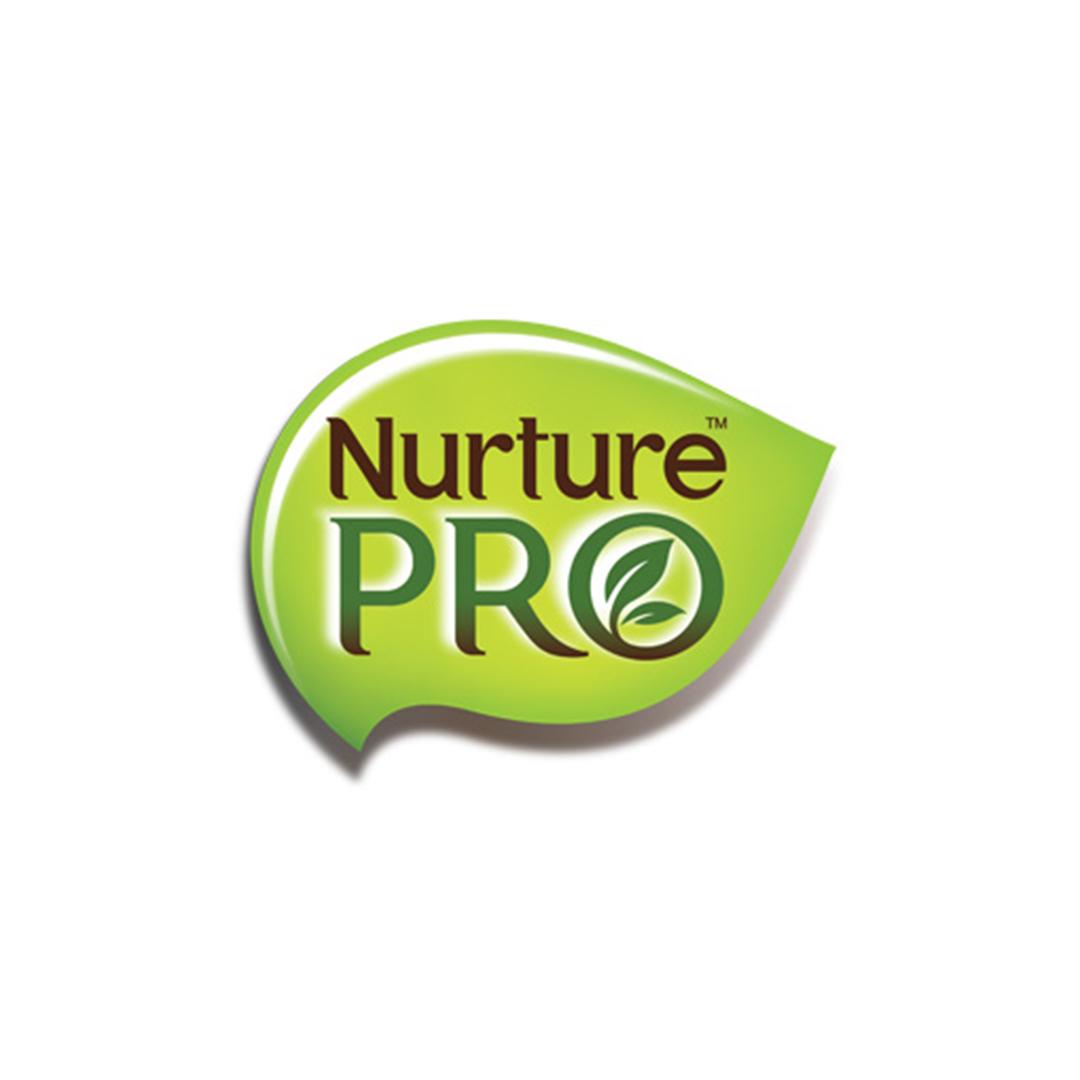 NPro Logo